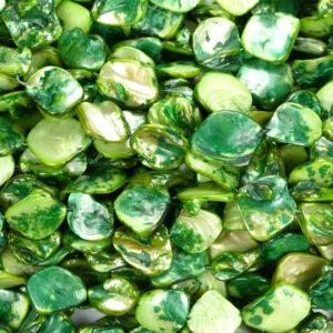 Pepite di madreperla verdi circa 18 x 18 mm, 1 capo