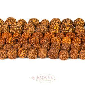 Rudraksha braun Mala 12 – 16 mm, 1 Strang