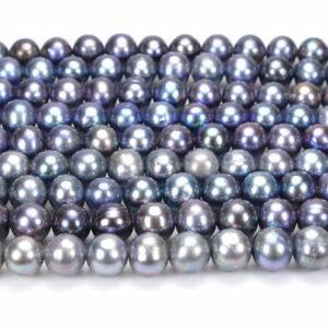 Süßwasserperlen pfau-blau fast rund 8 – 9 mm, 1 Strang